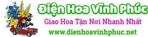 Điện hoa Vĩnh Phúc – LH: 081.909.2222, đặt hoa online, giao hoa tại nhà, shop hoa tươi, cửa hàng hoa tại vĩnh phúc